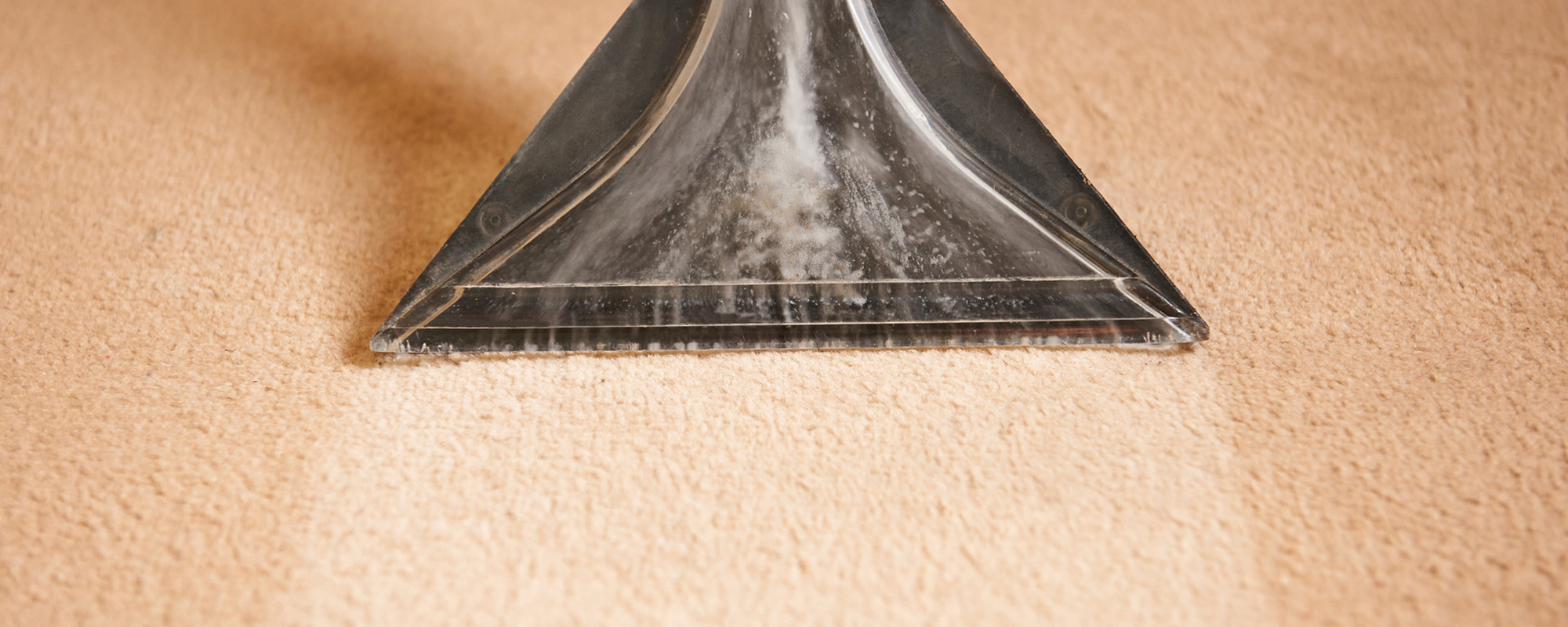 Cleaning a Carpet